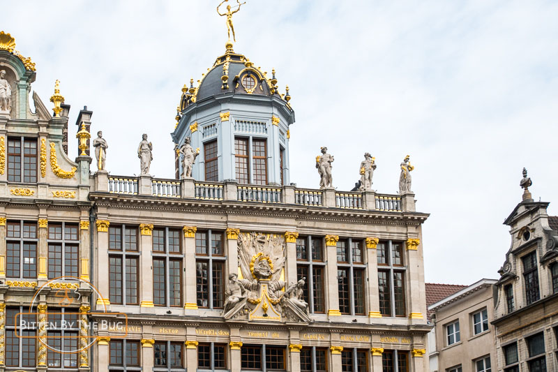 Guild houses around Grand Place
