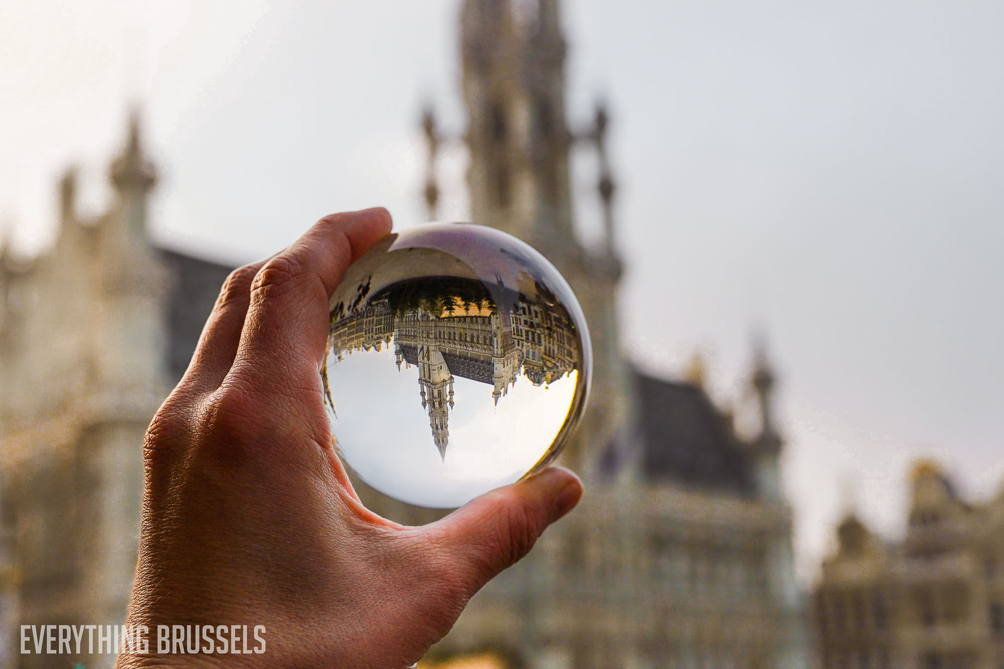 Grand Place, Hotel de Ville, through a lens ball