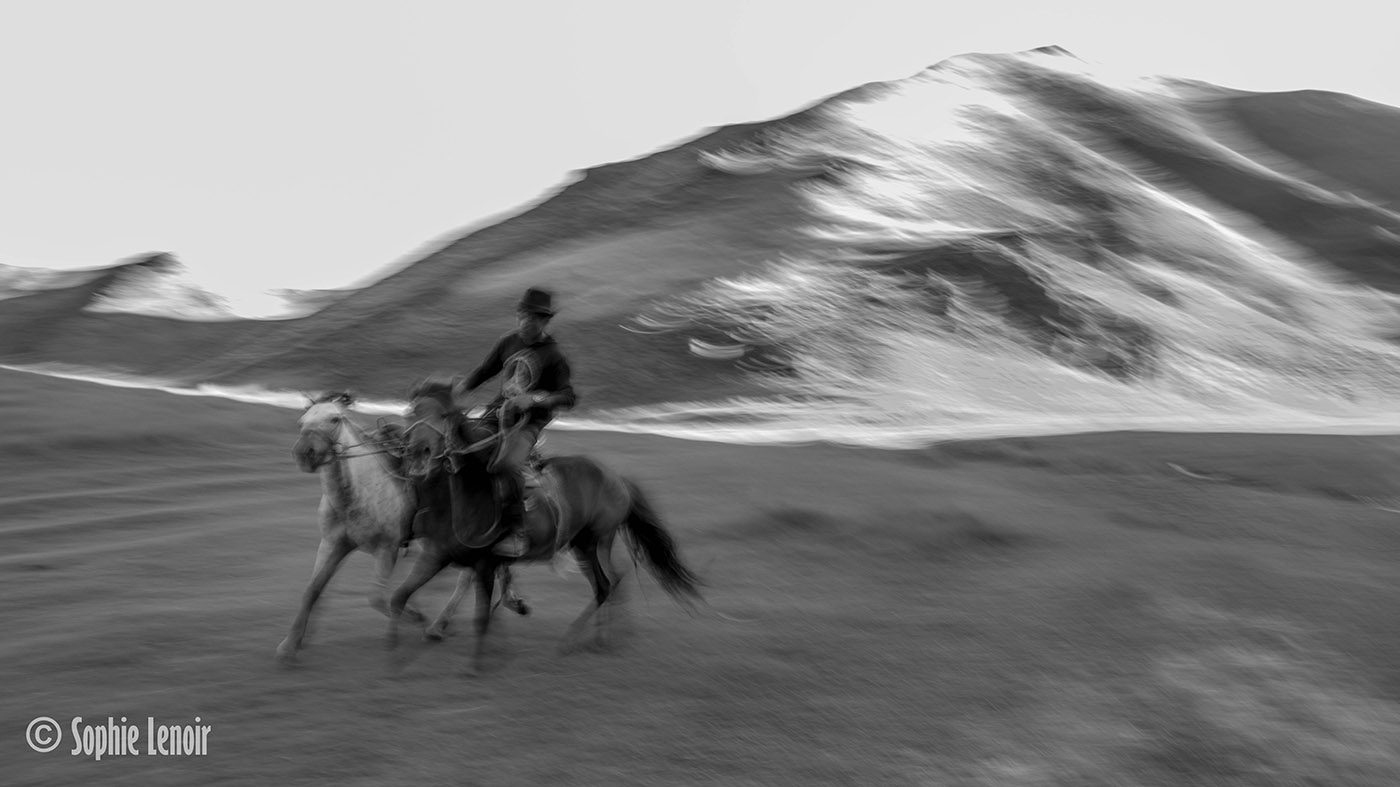 Experimental picture: Guy on horseback